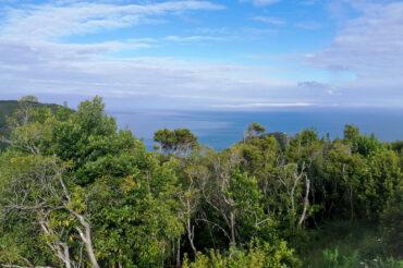 Kolory wysp na Azorach